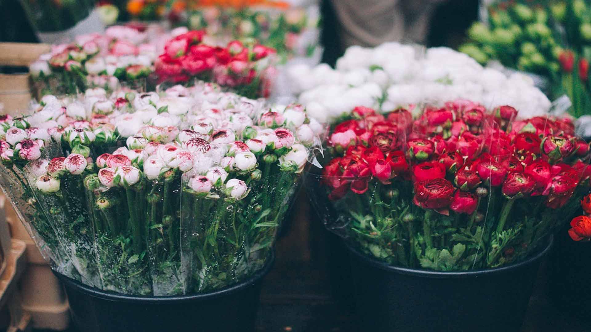 regresa-el-mercado-de-las-flores-de-molina-de-segura-1920