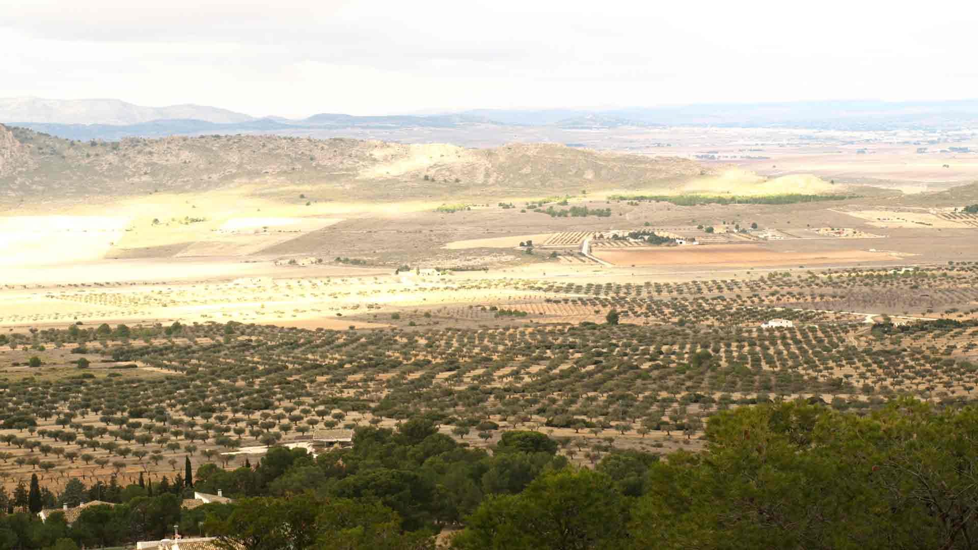 casas rurales en Murcia baratas